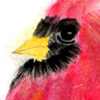 Cardinal - Chinese Brush Painting