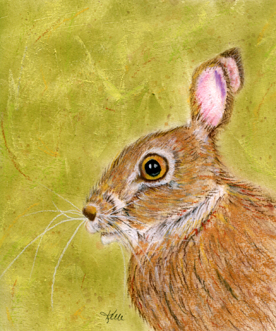 Wild Hare - Mixed Media Painting